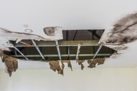 How to Avoid a Leaky Roof in Florida
